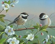 Black-capped Chickadee Greeting Cards Prints - A Wonderful Day Print by Mike Brown