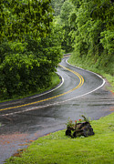Curvy Road Prints - After the Rain Print by Carolyn Marshall