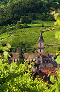 Haut-rhin Photo Framed Prints - Alsace Church Framed Print by Brian Jannsen