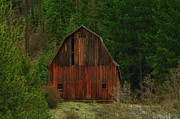 Old Barns Photo Prints - An Idaho Barn Print by Jeff  Swan