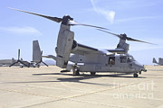 Taxiing Framed Prints - An Mv-22 Osprey Taxiing At Marine Corps Framed Print by Timm Ziegenthaler