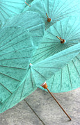 Doug Fisher Prints - Aqua Umbrellas Print by Douglas J Fisher
