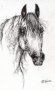 Horse Drawing Posters - Arabian Horse Drawing 47 Poster by Angel  Tarantella