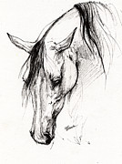 Horses Drawings - Arabian Horse Ink Drawing 6 by Angel  Tarantella