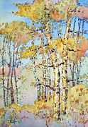 Joyce Hicks Framed Prints - Aspen Color Framed Print by Joyce Hicks