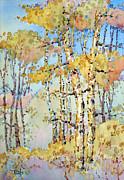 Joyce Hicks - Aspen Color