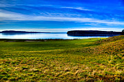 Us Open Art - #2 at Chambers Bay Golf Course - Location of the 2015 U.S. Open Tournament by David Patterson