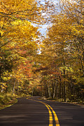 Mountain Road Photo Framed Prints - Autumn Drive Framed Print by Andrew Soundarajan