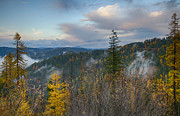 North Idaho Prints - Autumn Forest Print by Idaho Scenic Images Linda Lantzy