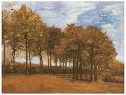 Autumn Landscape Paintings - Autumn Landscape by Vincent Van Gogh