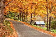 Shed Photo Framed Prints - Autumn Road Framed Print by Brian Jannsen