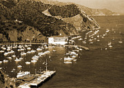 Los Angeles Digital Art Metal Prints - Avalon Bay Santa Catalina Island Metal Print by Barbara Snyder