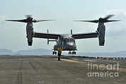 Featured Art - Aviation Boatswains Mate Signals An by Stocktrek Images