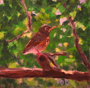 Patrick Paintings - Baby Robin by Patrick ODriscoll