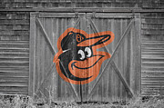 Baseball Glove Framed Prints - Baltimore Orioles Framed Print by Joe Hamilton