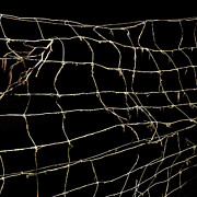 Entangled Photos - Barbed wire by Bernard Jaubert