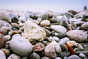 Pebbles. Prints - Beach pebbles Print by Elena Elisseeva