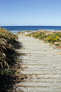Seashore Art - Beach trail by Les Cunliffe