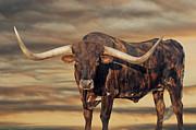 Robert Anschutz - Big Dawg