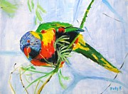 Birds Prints - Birds Eye View Print by Judy Kay