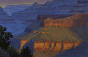Canyon Painting Originals - Blue Morning by Cody DeLong
