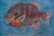 States Pastels - Bluegill Sunfish by Richard Goohs
