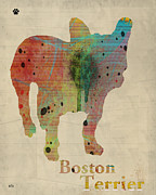 Canine Posters Mixed Media - Boston Terrier  by Brian Buckley