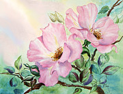 Bette Orr - Briarpatch Roses
