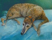 Brindle Pastels - Brindle Greyhound by Howard Scherer