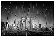 Peter Aitchison - Brooklyn Bridge