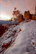 Laura Zirino - Bryce Canyon Dawn