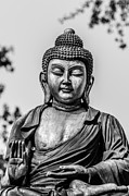 Buddhismus Framed Prints - Buddha - Siddhartha Gautama - In Black And White Framed Print by Colin Utz