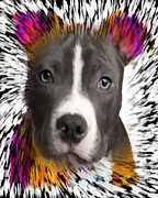 Bull Terrier Art - Bull Terrier by Char Swift