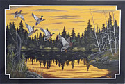 Crossbill Painting Originals - Bwca by Rudolph Bajak
