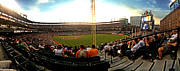 Oriole Park Prints - Camden Yards right field Print by Matt Zerbe