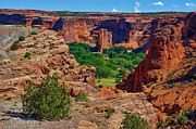 Dany  Lison - Canyon de Chelly