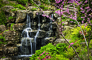 Spring Scenery Art - Cascading waterfall by Elena Elisseeva