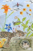 Dragon Fly Drawings Posters - Cat And Mouse Poster by Gerald Strine