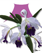 Cattleya Prints - Cattleya Valentine Triage dafoi Art 2 of 3  Print by Ruth  Benoit