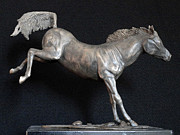 Art Sculptures Sculptures - Cavallo  by Roberto Bianchi