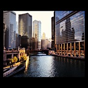 Bulls Photo Prints - Chicago River Print by Mike Maher