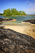 Vancouver Island Prints - Coast of Pacific ocean on Vancouver Island Print by Elena Elisseeva