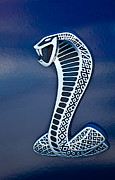 Shelby Cobra Photos - Cobra Emblem by Jill Reger