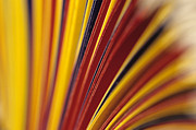 File Drawers Prints - Colorful close ups Print by Jim Corwin