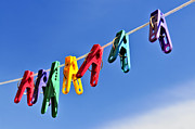 Washing Clothes Posters - Colorful clothes pins Poster by Elena Elisseeva