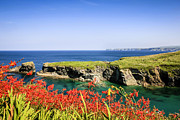 Cornwall Originals - Cornish Coast by Chris Smith