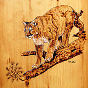 Mountain Lion Pyrography Prints - Cougar Print by Ron Haist