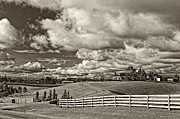 Country Living Photos - Country Living sepia by Steve Harrington