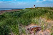 Beachgrass Posters - Covehead Lighthouse Poster by Matt Dobson
