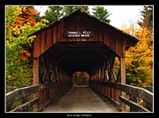 Rose Santuci-sofranko Posters - Covered Bridge at Allegany State Park Poster by Rose Santuci-Sofranko